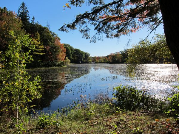 Merrill Pond State Reservation