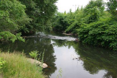 Blackstone Valley Bike Path